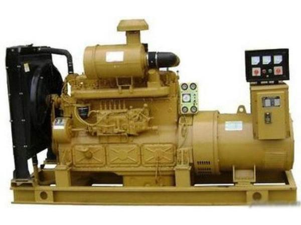上柴发电机 (3)
